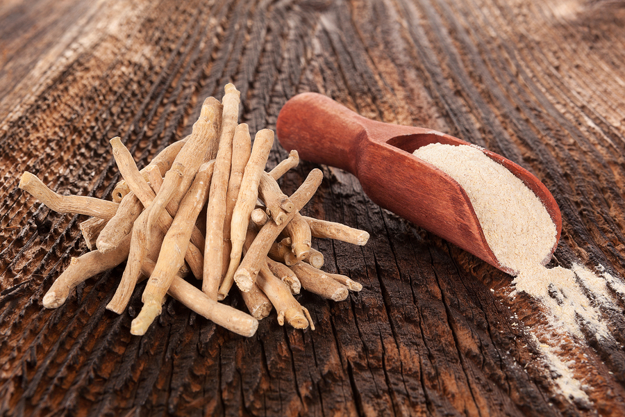 Ashwagandha: Herbal Support for Stressful Times